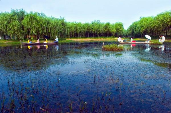 绍兴镜湖梅山公园西入口智能化项目
